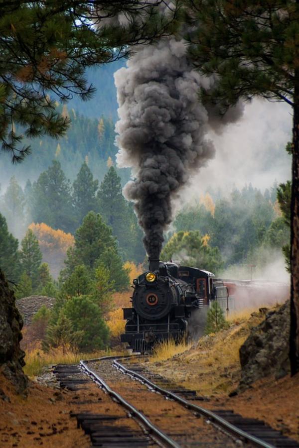 train 1871819 960 720 pixabay