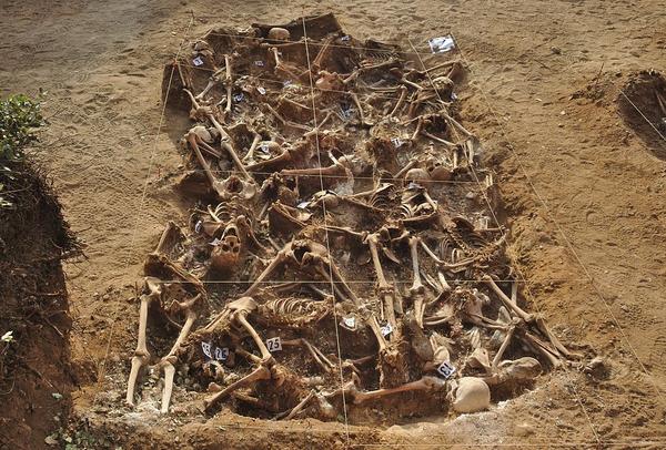Spanish Civil War   Mass grave   Estepar  Burgos
