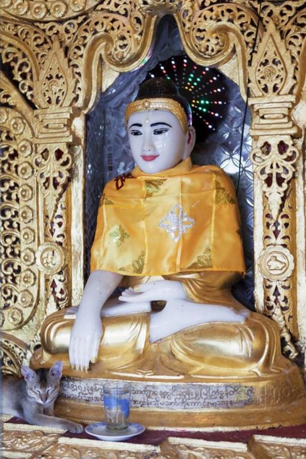 Buddha fra pagode i Myanmar   mindre COLOURBOX7157666